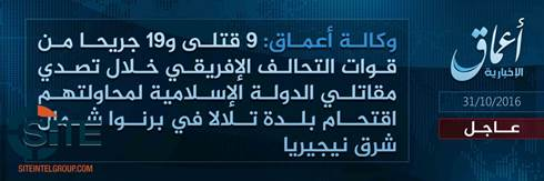 Amaq Reports 9 Killed 19 Wounded in IS Attack in Nigerias Borno State