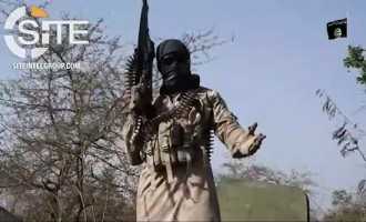 Boko Haram Shoots Down Alpha Jet in Video, Shows Dead Pilot and Wreckage