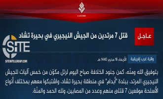 IS' West Africa Province Claims Killing 7 Nigerian Soldiers in Abadam
