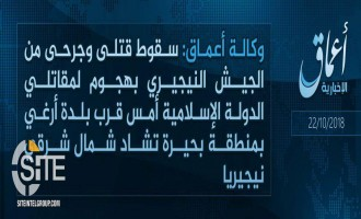 'Amaq Reports IS Attack on Nigerian Soldiers Near Arege