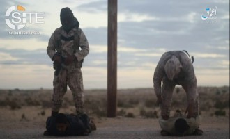 'Amaq Video Shows IS Fighters Beheading Tribal Militiamen in Sinai