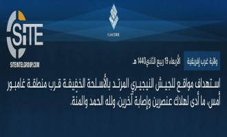 IS' West Africa Province Claims Killing 2 Nigerian Soldiers in Gamboru