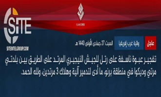 IS' West Africa Province Claims Bombing Nigerian Convoy, Striking Post in Borno