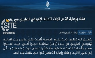 IS' West Africa Province Claims 33 Casualties Among MJTF Troops in Ambush in Borno