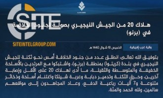 IS' West Africa Province Claims Killing 20 Nigerian Soldiers in Borno