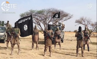 ISWAP Claims 17 Nigerian Soldiers, 4 Militiamen Killed in Separate Attacks in Yobe