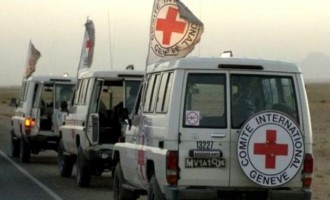Afghan Taliban Reinstates Security Assurances for ICRC and WHO, Limits Polio Vaccine Campaign