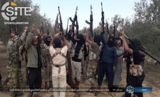 "IS' Sinai Province Pledges to New ""Caliph"" Abu Ibrahim"