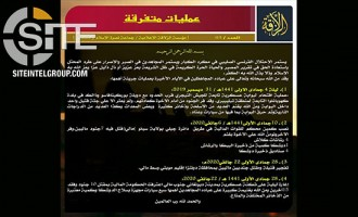JNIM Claims Attack on Police Station in Niger, 3 Operations on FAMa in Mali