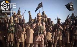 ISWAP Claims Mortar Strikes on Military Posts in Niger and Nigeria