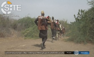 ISWAP Increases Frequency, Variety of Attacks in Lake Chad Region