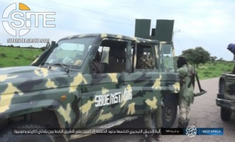ISWAP Claims Seizing Red Cross Vehicle at Bogus Checkpoint in Borno (Nigeria)