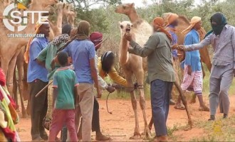 Shabaab Documents Charitable Giving of Livestock to Somali Civilians in 5th Episode of Video Series