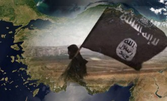 IS Supporter Urges Iraqi and Syrian Expats in Turkey to Form Cells or Act Alone in Jihad