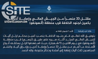 IS Claims Ambush on Malian Soldiers Near Ansongo, Killing 33