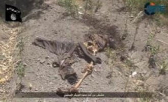 IS Video Shows Dead Iraqi Soldiers, Destroyed Vehicles in Jurf al-Sakhar