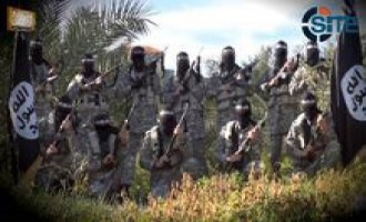 Alleged Jihadi Group Campaigns for Donations to Palestinian Fighters, Suggests Using CashU
