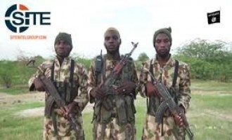 IS' West Africa Province Releases Video on Clashes with Nigerian, African Coalition Forces