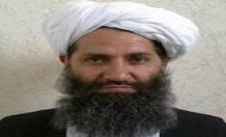 In Environmental Message, Afghan Taliban Leader Calls on Fighters to Plant Trees