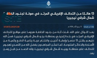 IS' West Africa Province Claims Killing 13 African Coalition Forces in Attack in Borno