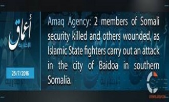 IS Fighters Kill Two from Somali Security Forces, According to IS' 'Amaq News Agency