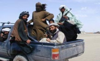 Afghan Taliban Refutes Alleged Envoy's Claims of Negotiations