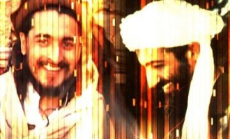 Jihadi Forum Members Continue Calls For Vengeance After Death of TTP Leader