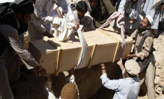 Afghan Taliban Says Attacks on Afghan Shi'ites are Attacks on All Afghans