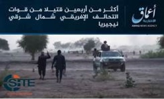 'Amaq Reports IS Fighters in Nigeria Killing Over 40 African Forces in Surprise Attack