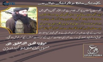 TTP Officials Remark on Proposed Negotiations with Pakistani Government