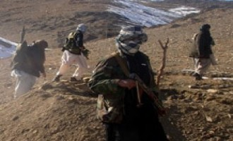 Afghan Taliban Issues Statement Condemning Civilian Casualties