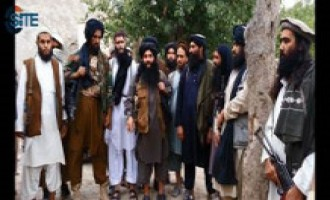 TTP Announces Exchange of Captive Pakistani Academic for Three Prominent Group Members